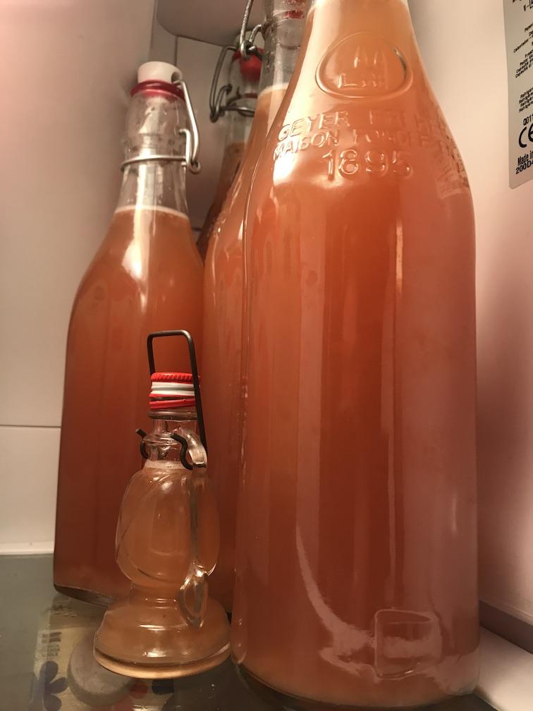 A fridge full of tepache